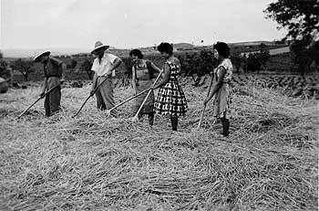 Memòries del martinenc Joan Costa Cusiné durant la Guerra Civil i la Postguerra (1936-1945) Part 2